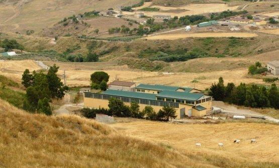 Azienda Passalacqua