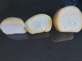 cheesella